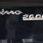 dino-spider-2400-38