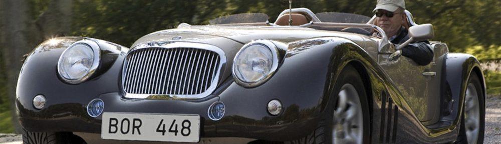 leopard-roadster-6l-1