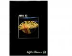 alfa-romeo-33_1984-8-brochure