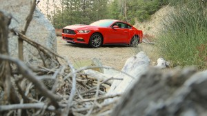 ford-mustang-2l3-ecoboost-13