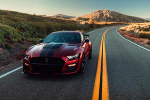 ford-mustang-gt500-shelby-2019-12