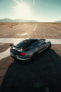 ford-mustang-gt500-shelby-2019-14