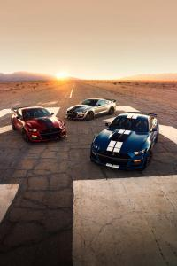 ford-mustang-gt500-shelby-2019-5