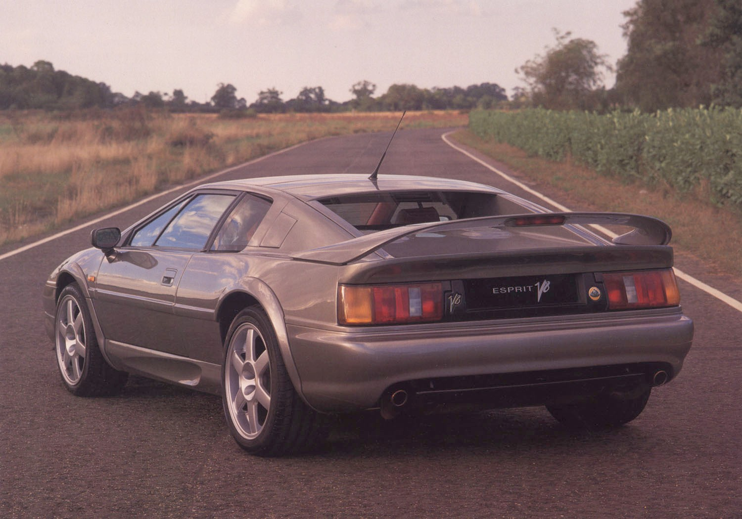 lotus esprit v8 grey