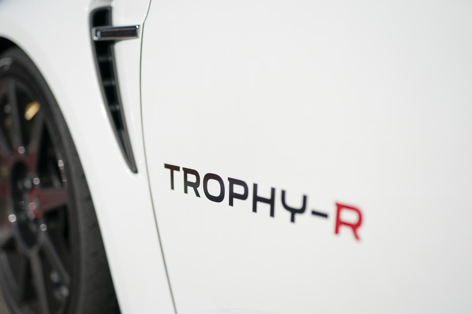 Megane R.S. Trophy-R decal